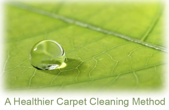 natural carpet cleaning